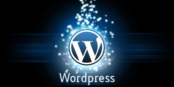 WordPress Haber Temaları (2013)